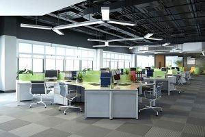 Thiết kế văn phòng công ty EcobaVP-DG2