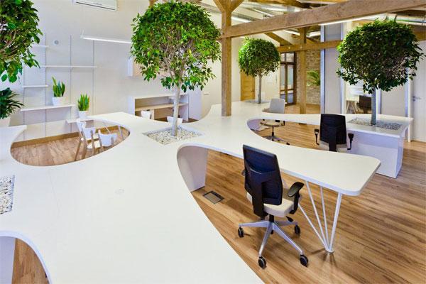 Thiết kế trong văn phòng cao ốc phù hợp với cấu trúc của tòa nhà