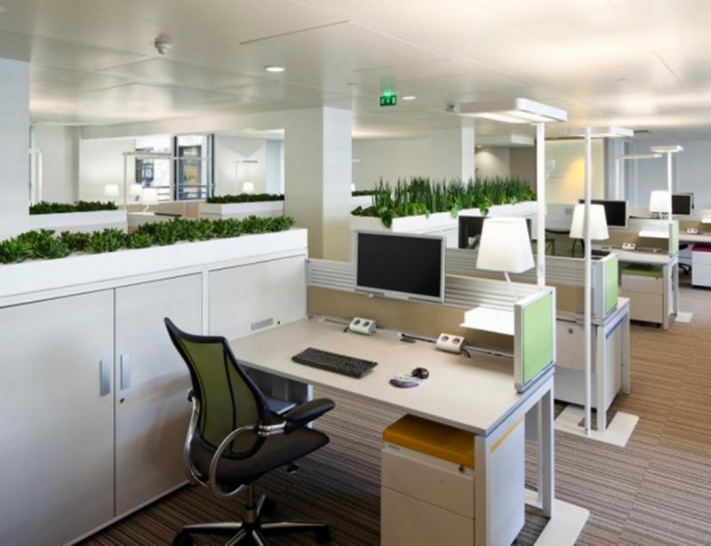 Ý tưởng đưa thiên nhiên vào không gian làm việc đa chức năng
