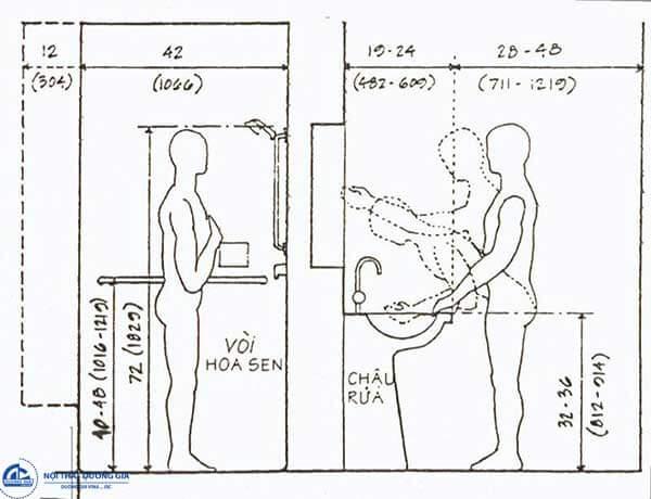 thiết kế nội thất cho con người Việt Nam cần phải căn cứ vào nghiên cứu nhân trắc học người Việt Nam