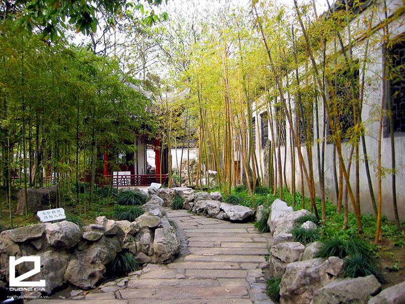 Cây tre cảnh - Lời giải đáp cho câu hỏi nên trồng cây gì trước cổng nhà?
