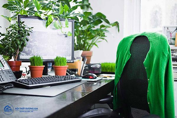 Một số lưu ý về cách bố trí hướng bàn văn phòng tuổi Đinh Mão