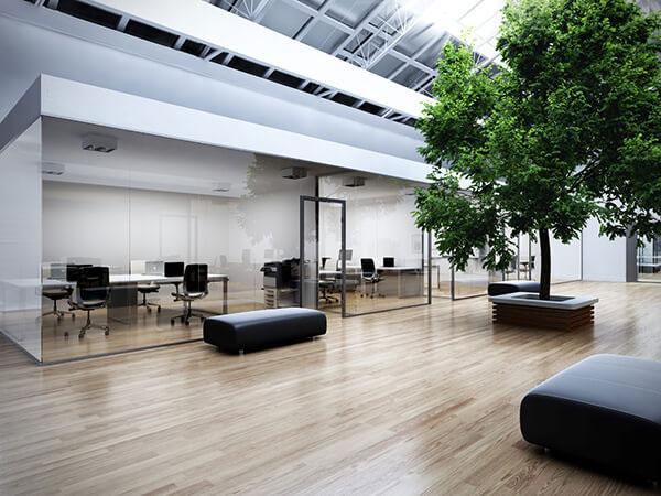 Thiết kế văn phòng xanh với ánh sáng tự nhiên