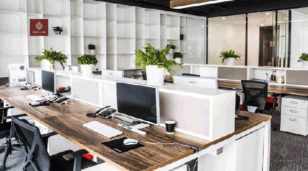 Văn phòng củaOffice Star
