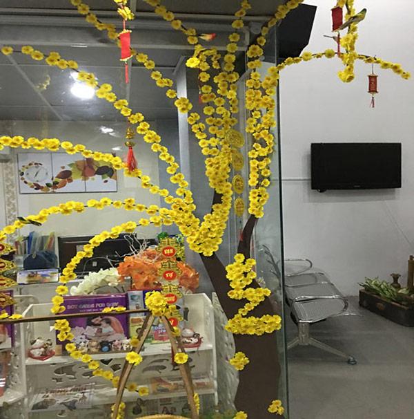 Sử dụng hoa đào, hoa mai để trang trí văn phòng đón Tết